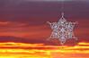 Absaroka Snowflake
