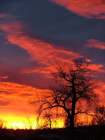 Mary Carter Greenway Sunrise