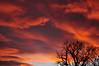 South Platte Sunset