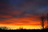 Greenway Sunrise
