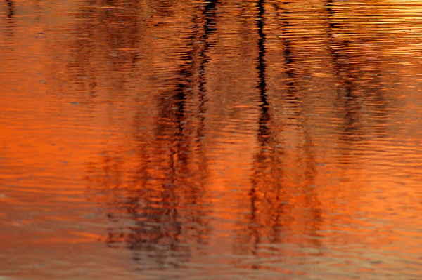 Sunrise on the South Platte