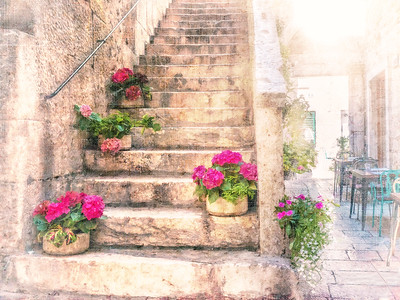 Pretty pink potted geraniums on an old stone staircase.