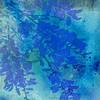 blue mood ...