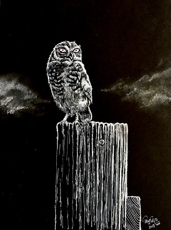 Lonely night, white ink and nib and pastel  on black paper 8X11 inch 2018
