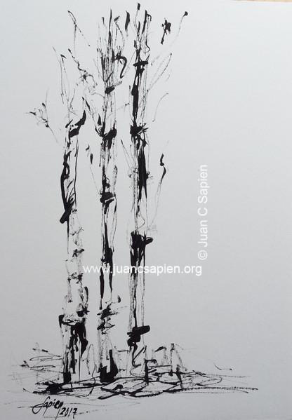 Pintura-0505