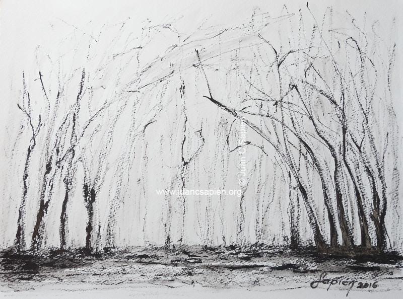 Pintura-0406