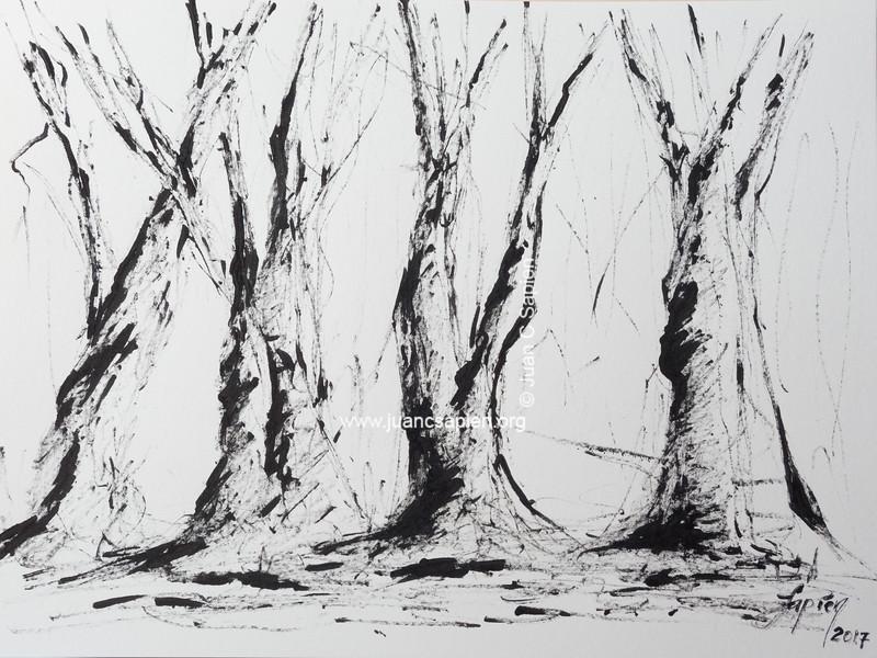 Pintura-0500