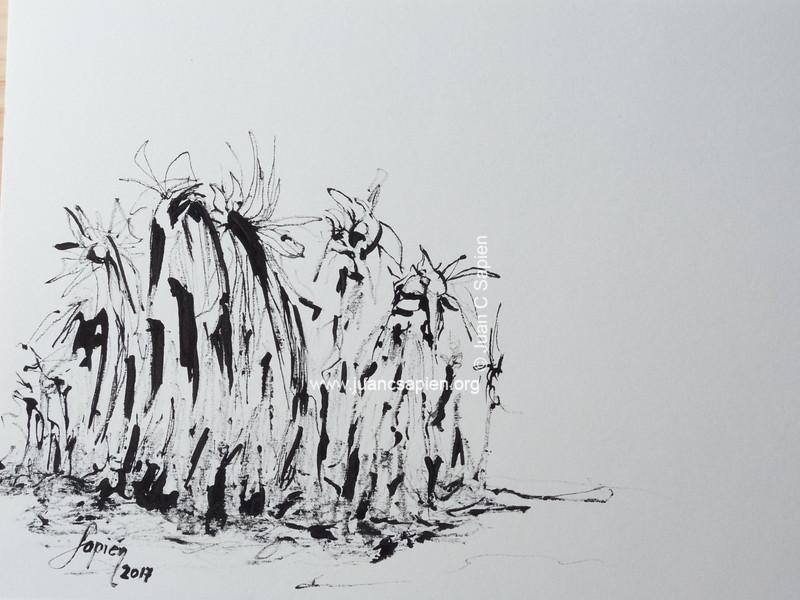 Pintura-0506