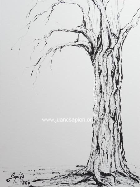 Pintura-0498
