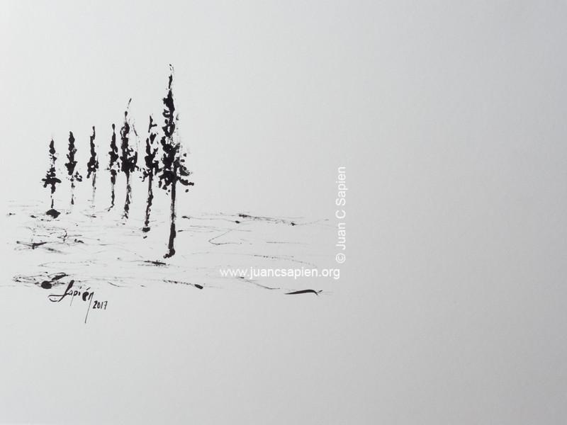 Pintura-0502
