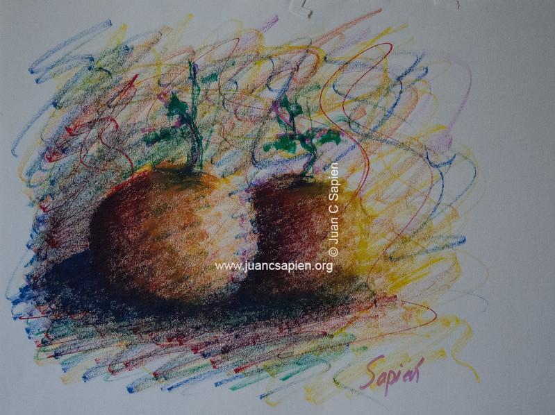 Pintura-0524