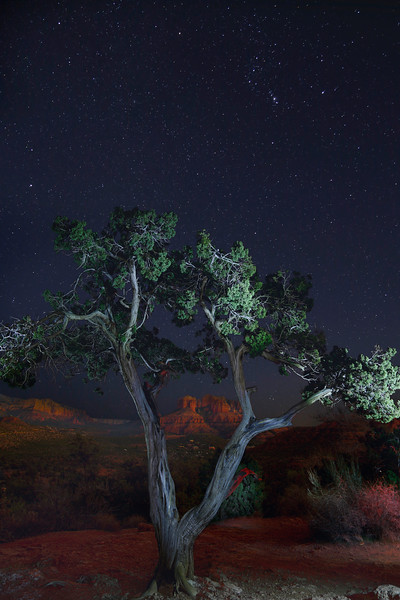"""Cathedral Rock Sedona  """"Light Painting"""""""