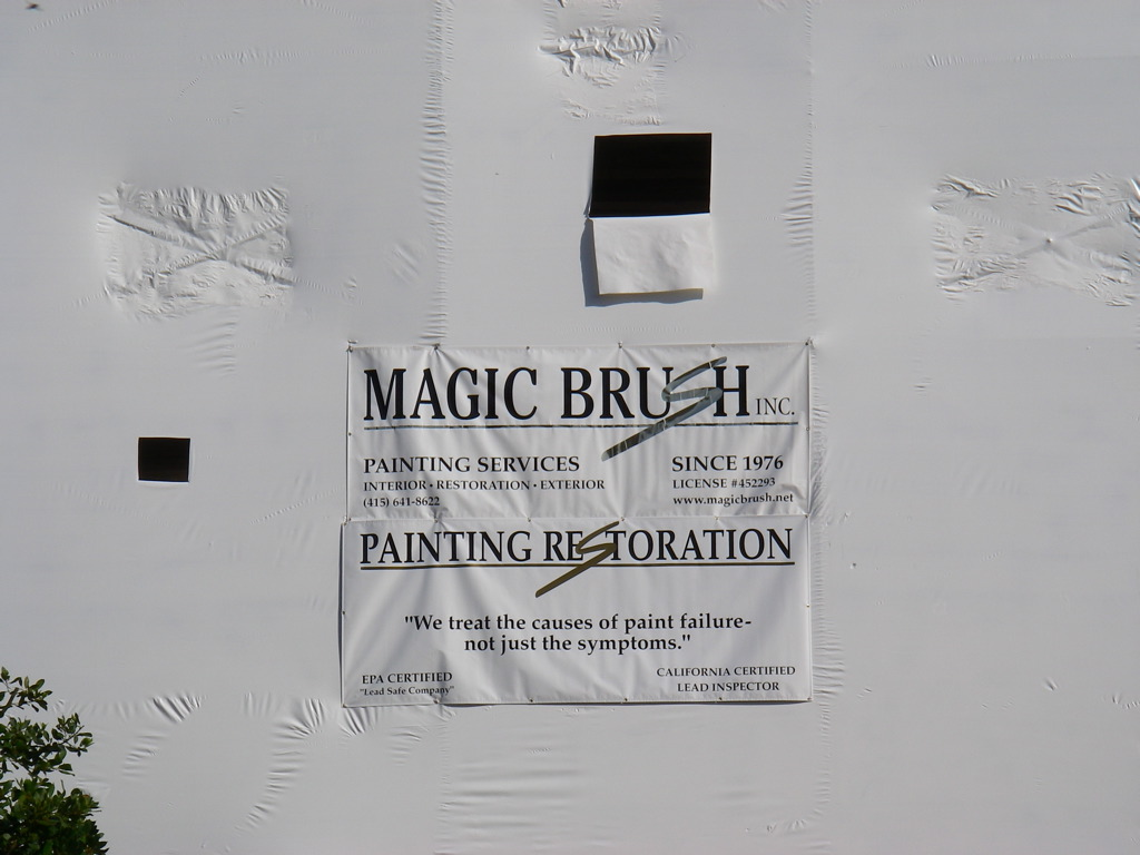 """""""We treat the causes of paint failure - not just the symptoms."""""""