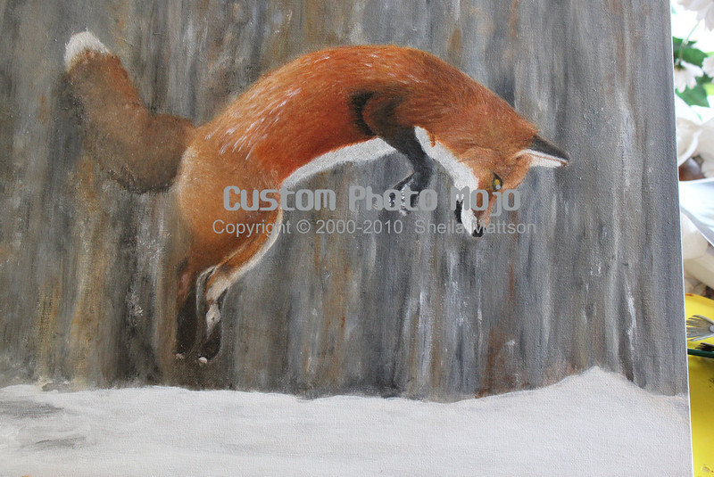 """The Hungry Fox (acrylic on canvas)<br /> (this photo does not show completed fox...)<br /> <br /> ~16"""" x 20""""<br /> Maple Framed<br /> <br /> My family has a subscription to the MN Conversation magazine and one of the months featured foxes.  I was intrigued by the adaptability and hunting skills of the fox and felt inspired to paint one in mid leap for an upcoming show.  <br /> <br /> Here is the result.<br /> <br /> Foxes with their exceptional hearing can hunt mice and other animals 6 ft below the ground.  They jump as high as 15 feet in the air and go headlong into the pristine snow in their pursuit for a meal."""