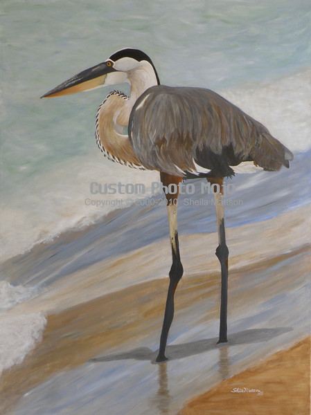 """Great Blue Heron (acrylic on canvas) ~30""""x40""""  $599 USD  This painting has been displayed in the Burnsville Performing Arts Center Gallery and Box Gallery - Thrivent Financial Building in Minneapolis, MN.    See the <strong/>Recent, Fun or Memorable</strong> gallery for more information on this painting and a few more photos."""