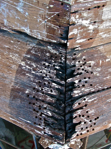 "The joints on this large redwood cornice ledge were full of rot. After shipping off the paint, we dug out the loosest of the punky rotted wood (this is all non-structural). As you can see, many 3/8"" holes were drilled into the wood pieces ( but NOT drilled all the way through the wood). A clear penetrating epoxy sealer (viscosity only slightly greater than water) is then poured and ""injected"" into the wood (we often use turkey basters and ketchup bottles). Multiple applications of the sealer are required so that it is absorbed throughout the surrounding wood. This product is also called a ""consolidant"" because it consolidates the somewhat punky wood fibers into the more solid wood that surrounds it. At this point, you now have a surface that can be sucessfully patched. Most fillers fail for two reasons: 1) the wrong fillers are chosen (more on that later) and 2) the underlaying surface is not properly prepared to receive the filler."