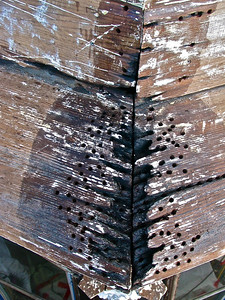 """The joints on this large redwood cornice ledge were full of rot. After shipping off the paint, we dug out the loosest of the punky rotted wood (this is all non-structural). As you can see, many 3/8"""" holes were drilled into the wood pieces ( but NOT drilled all the way through the wood). A clear penetrating epoxy sealer (viscosity only slightly greater than water) is then poured and """"injected"""" into the wood (we often use turkey basters and ketchup bottles). Multiple applications of the sealer are required so that it is absorbed throughout the surrounding wood. This product is also called a """"consolidant"""" because it consolidates the somewhat punky wood fibers into the more solid wood that surrounds it. At this point, you now have a surface that can be sucessfully patched. Most fillers fail for two reasons: 1) the wrong fillers are chosen (more on that later) and 2) the underlaying surface is not properly prepared to receive the filler."""
