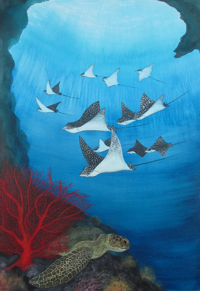 Eagle rays and green turtle