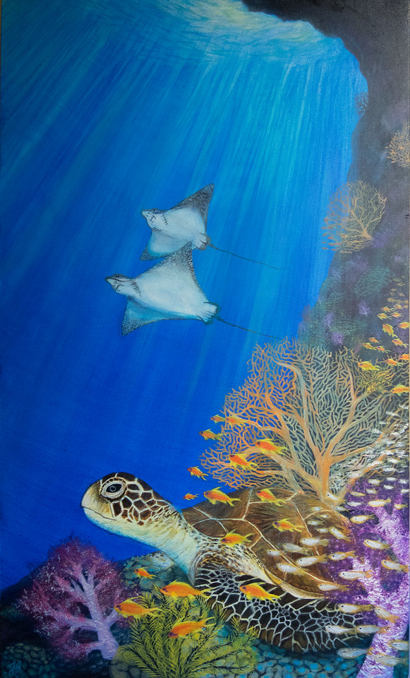 Green turtle and Anthias