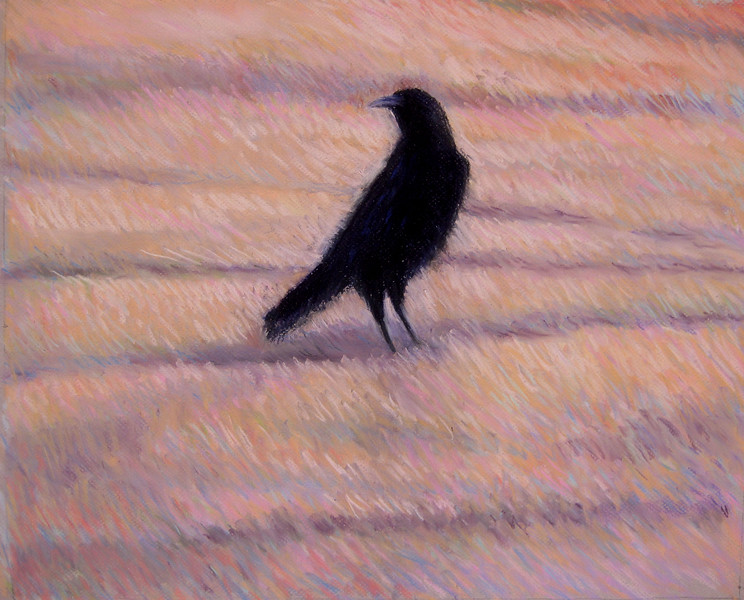 RAVEN SERIES ~ NO 1  RAVEN VISITOR