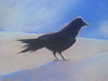 RAVEN SERIES ~ RAVEN ON THE BEACH