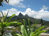 VIEW  of Olomana Peak from Gallery Lanai