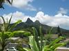 VIEW  of Olomana Peak from Gallery Lanai
