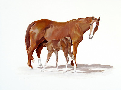 Mare and Foal 11x14 oil on paper SOLD