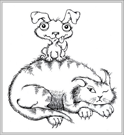 Dog on Cat<br /> Pen and Ink