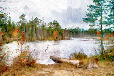 The Pines Pond 332