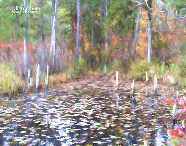 On Goshen Pond 179