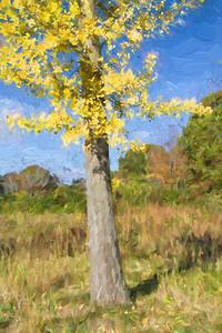 Author's Tree 151