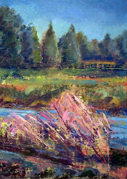 Muhly Grass w/ distant bridge