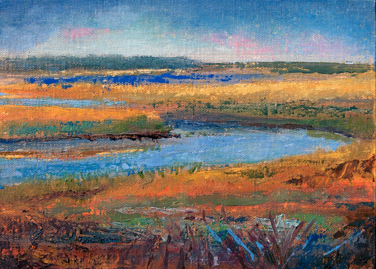 Meandering Kiawah River