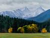 """""""Trapper Peak in Autumn"""" - Oil - 18""""x 24"""""""