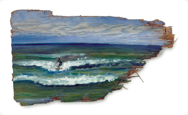 Cisco Surfin' on Drift plywood
