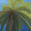 Palm (Relief) - #132
