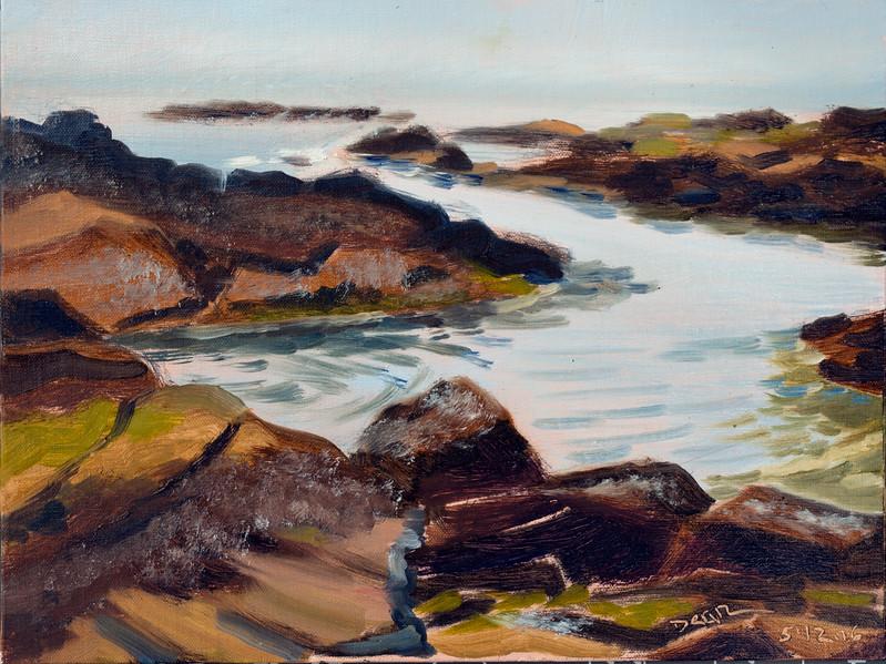 Receding Tide Biddeford Pool Rocks