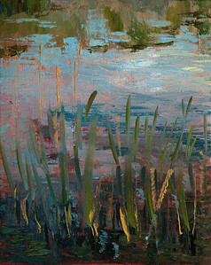 Pond Grass at Dusk