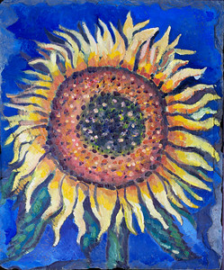 Sunflower on Slate