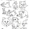 Kitten sketches<br /> Studies for children's book in process