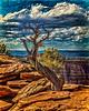 Colorado Trip 2017-2287 (painted)