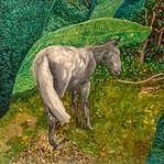 Belizean Horse Study #2