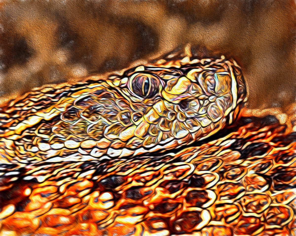 prairie rattlesnake - 6250 painting