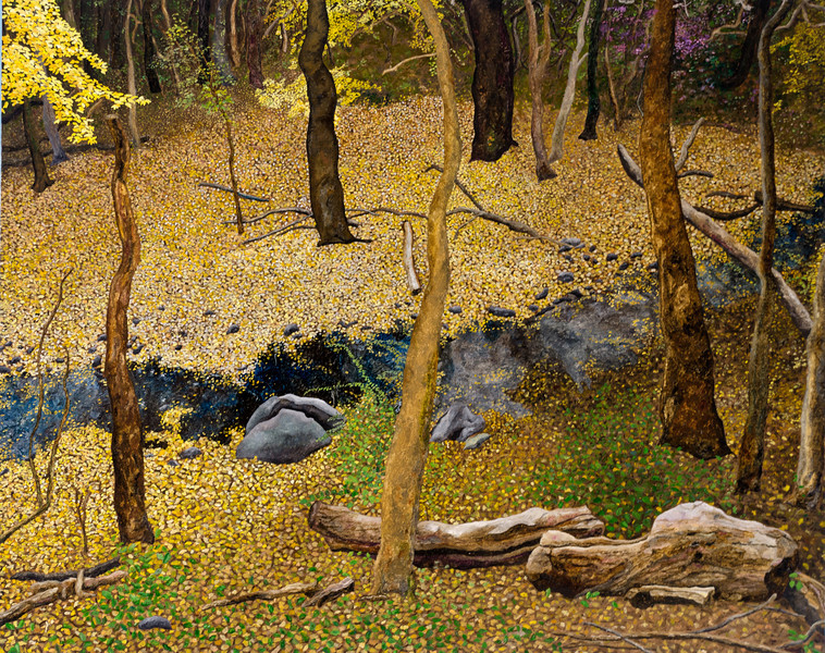 Morris Park Creek Autumn