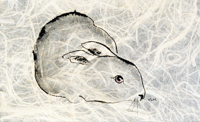 """BUNNY""<br /> ink on rice paper"