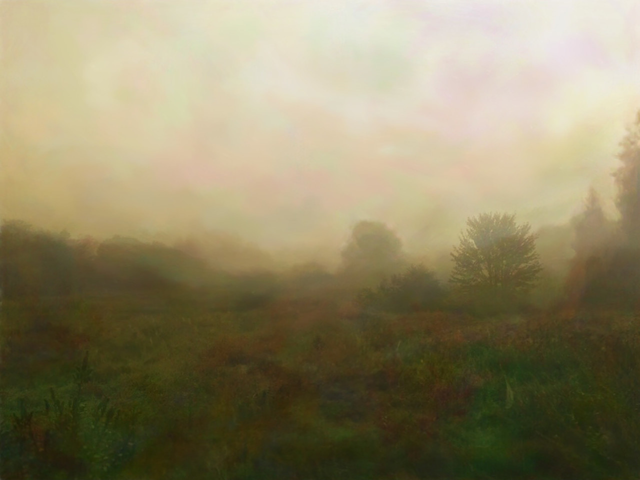 Pre-Autumn Morning Fog