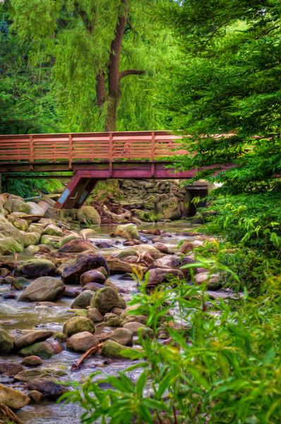 Edward Gardens Creek