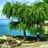 Vista do Lago Léman