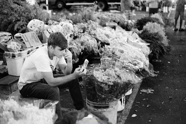 Mercado das Flores